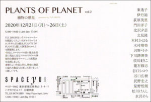 2020 PLANTS OF PLANET vol.2 DM